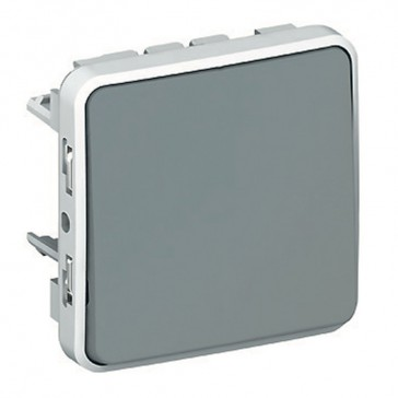 Switch Plexo IP55 - 2-way - 10 AX 250 V~ - modular - grey