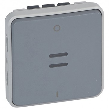 Double pole switch with indicator Plexo - IP55-IK07 - 16 A-250 V~ - grey