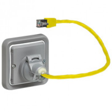 Adaptor for RJ 45 socket Plexo - category 6 - IP55 - IK07 - grey/white