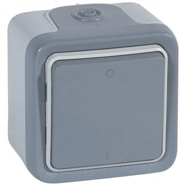 Double pole switch Plexo - IP55-IK07 - 10 AX-250 V~ - surface mounting - grey