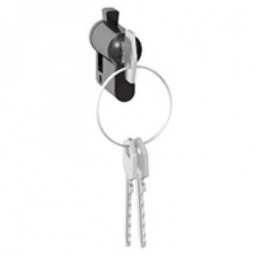 European standard key barrel - with keys (3) - for key mechanisms