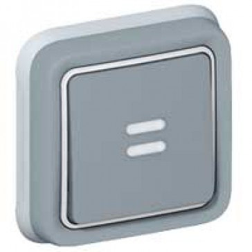 Push-button Plexo IP55 - illuminated changeover - flush mounting - grey