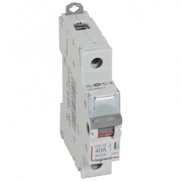 Isolating switch - 1P 250 V~ - 40 A
