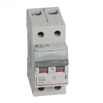 Isolating switch - 2P 400 V~ - 100 A