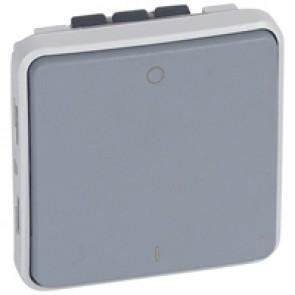 Double pole switch Plexo - IP55-IK07 - 16 A-250 V~ - grey