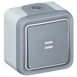 Push-button Plexo IP55 - illuminated N/O contact - surface mounting - grey