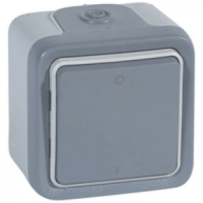 Double pole switch Plexo - IP55-IK07 - 10 AX-250 V~ - surface mounting - grey