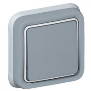 Switch Plexo IP55 - 2-way - 10 AX 250 V~ - flush mounting - grey