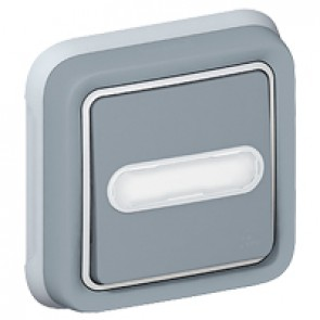 Push-button Plexo IP55 - illuminated changeover + label holder - flush mounting -grey