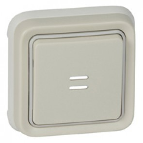 Push-button Plexo IP55 - illuminated changeover - flush mounting - white
