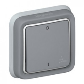 Double pole switch Plexo IP55 - 10 AX 250 V~ - modular - grey
