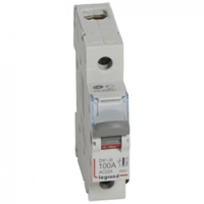 Isolating switch - 1P 250 V~ - 100 A