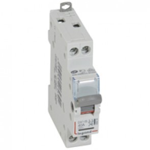 Isolating switch - 2P with indicator 250 V~ - 40 A