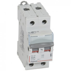 Isolating switch - 2P 400 V~ - 40 A