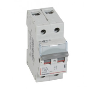 Isolating switch - 2P 400 V~ - 125 A