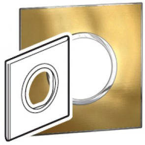 Plate Arteor - British standard - round - 2 modules - gold brass