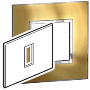 Plate Arteor - Italian / US standard - square - 1 module - gold brass