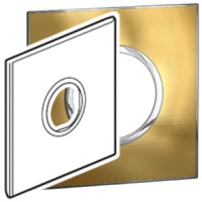 Plate Arteor - US standard - round - 2 modules - 4''x4'' - gold brass