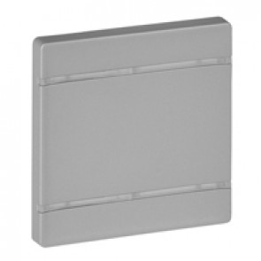 Cover plate Valena Life - without marking - 2 modules - aluminium
