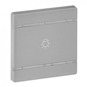 Cover plate Valena Life - light symbol - 2 modules - aluminium