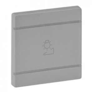 Cover plate Valena Life - regulation symbol - 2 modules - aluminium