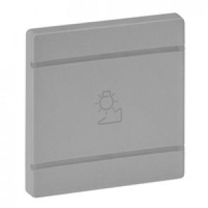 Cover plate Valena Life - regulation symbol - 2 modules - aluminium